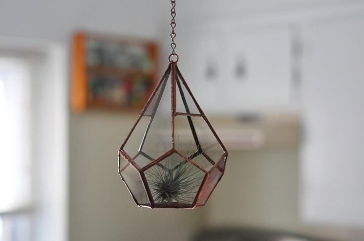 ABJ Glassworks - hanging terrarium