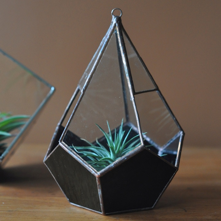 ABJ Glassworks - magus tear terrarium