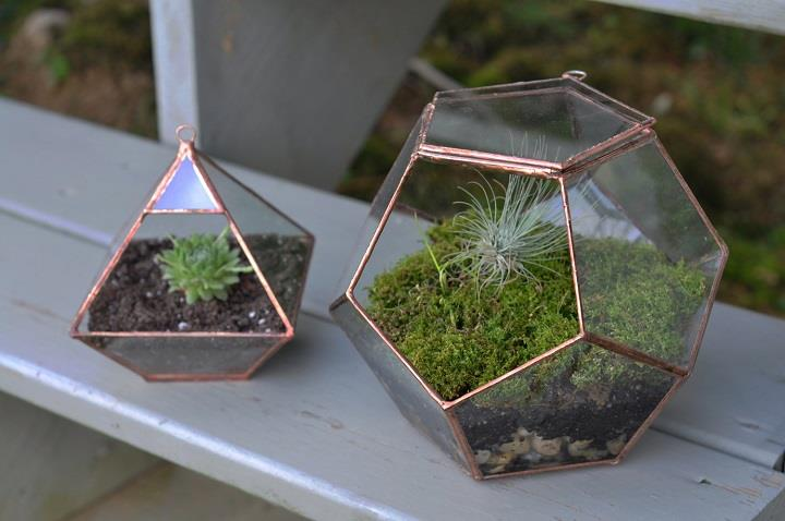 ABJ Glassworks - terrariums