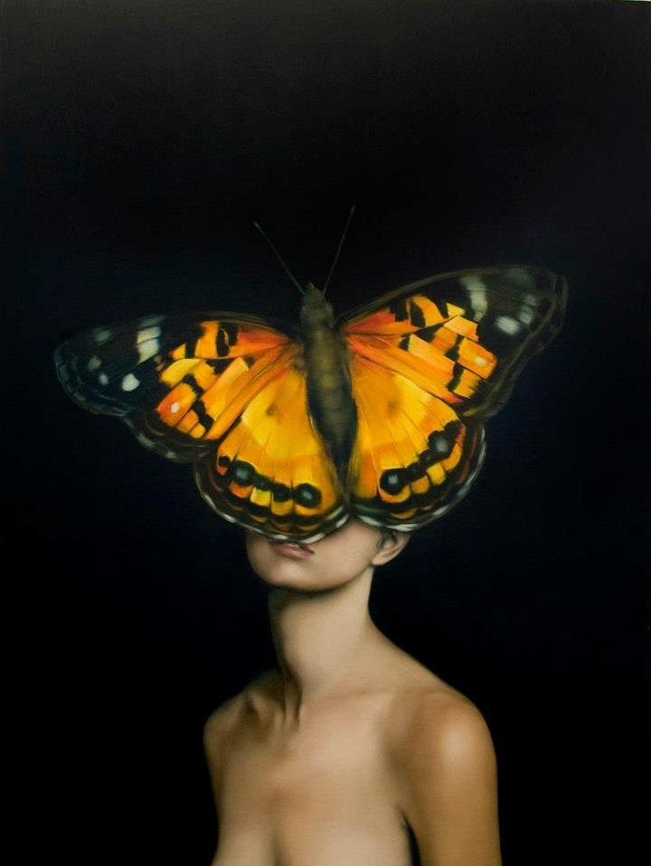 Amy Judd - orange butterfly