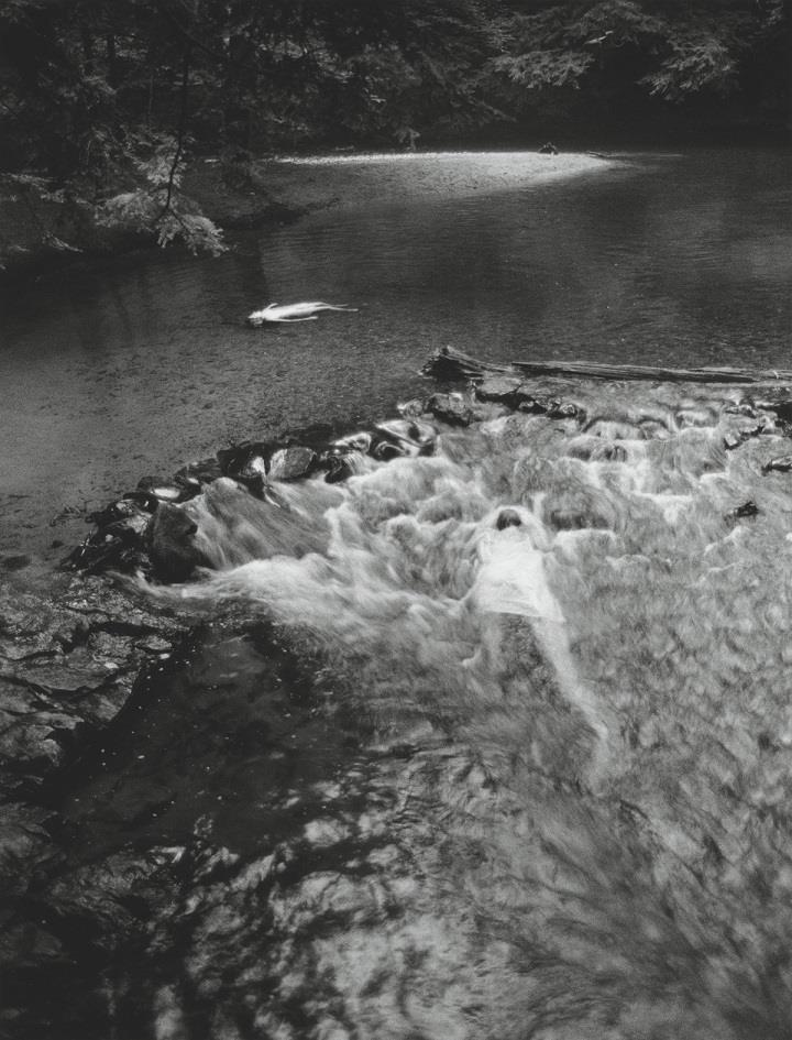 Anne Arden McDonald - in the river