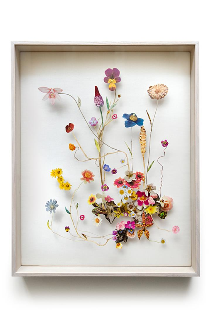 Anne Ten Donkelaar - Flower Constructions