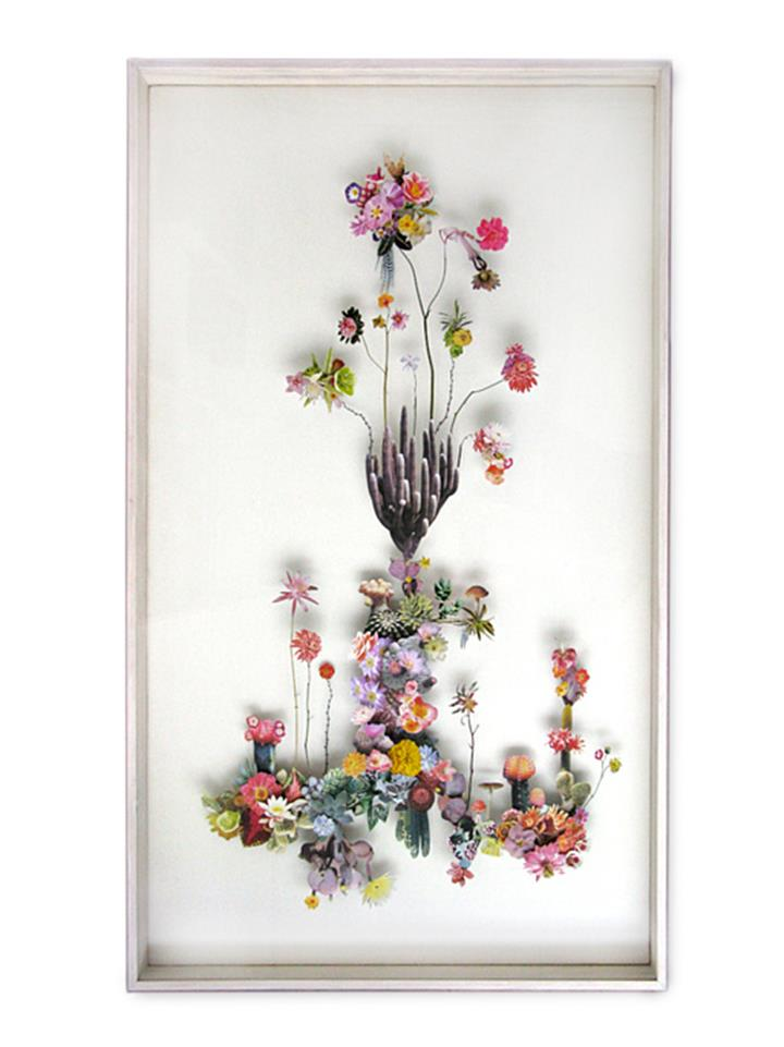 Anne Ten Donkelaar - Flower Constructions3