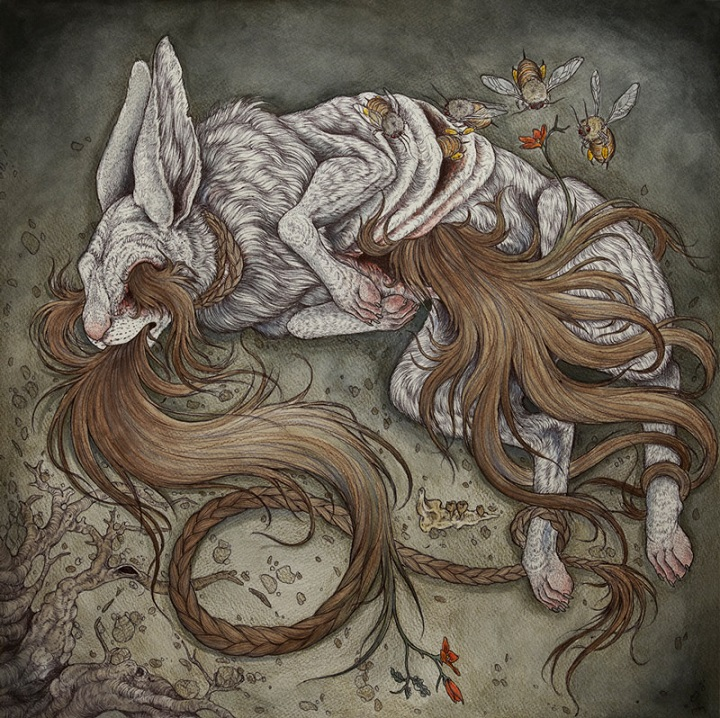 Caitlin Hackett - rabbit
