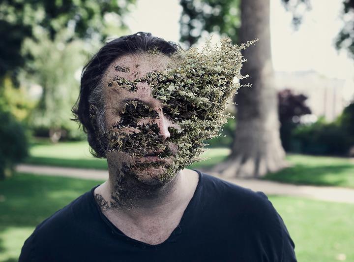 Cal Redback - Treebeard 4
