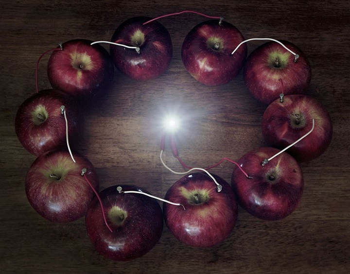 Caleb Charland - apples