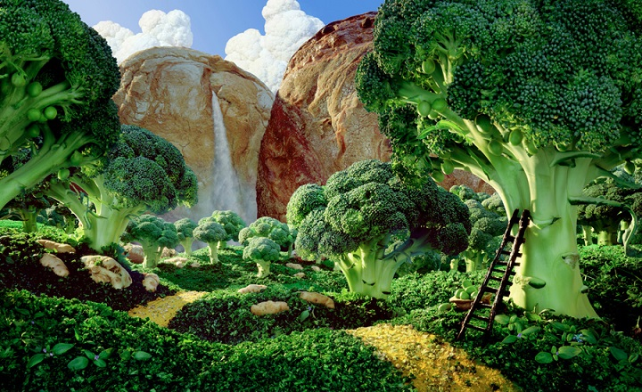 Carl Warner - Brocolli Forest