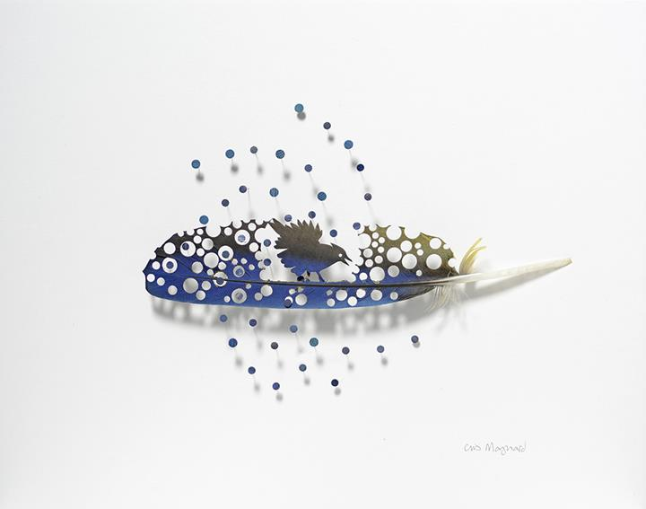 Chris Maynard - feather dots