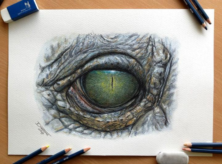 Dino Tomic – Eye Color Pencil Drawing Study  Feather Of Me