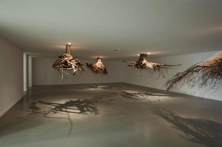 Giuseppe Licari - trees from ceiling