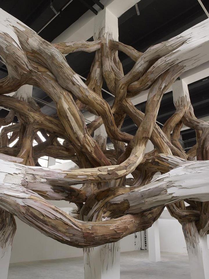 Henrique Oliveira - tangled