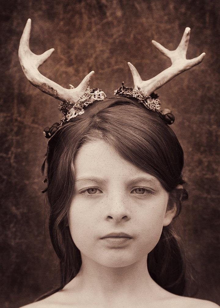 Holly Wilmeth - deer