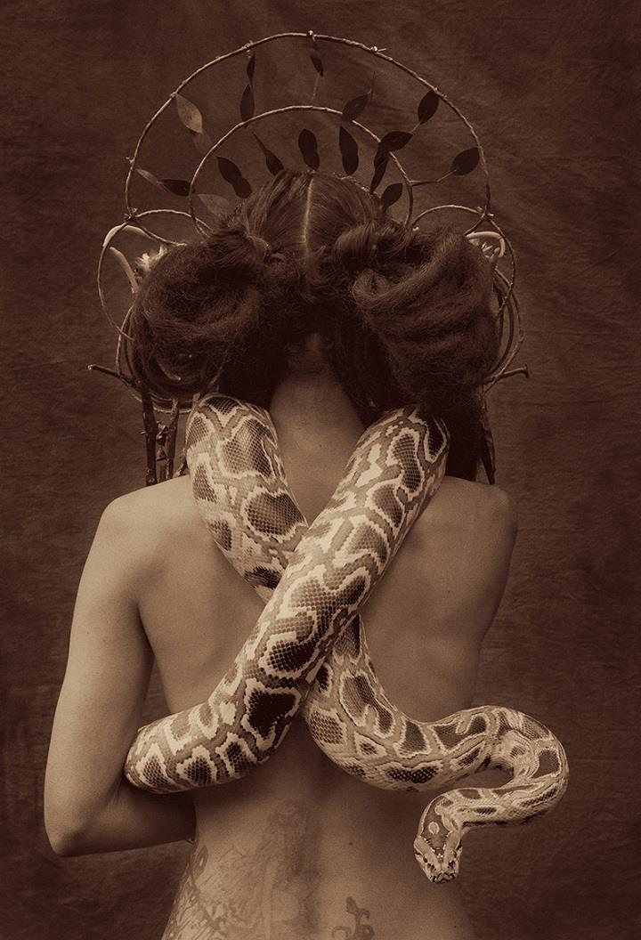 Holly Wilmeth - snake