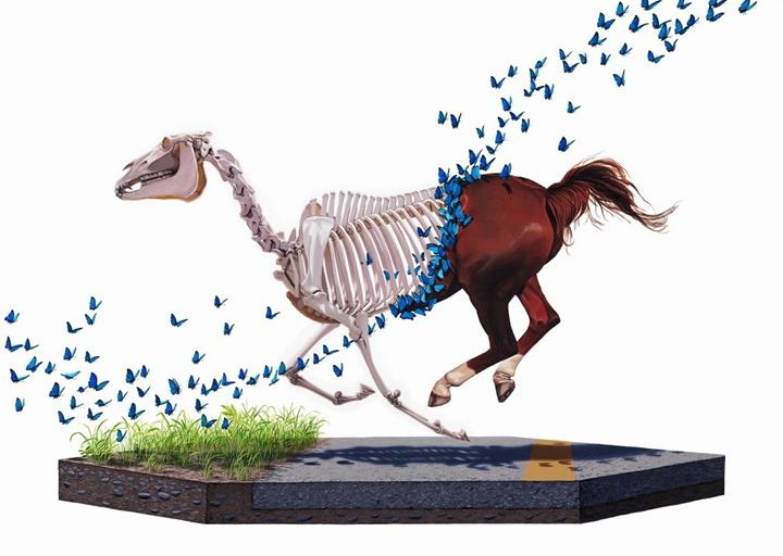 Animal Paintings by Josh Keyes