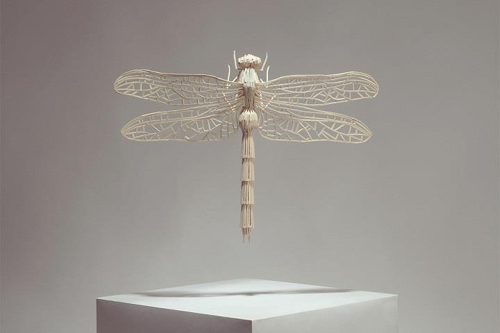 Kyle Bean - stick dragonfly