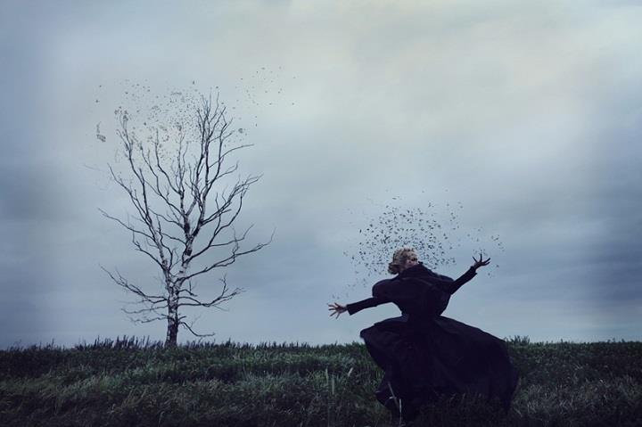 Kylli Sparre - tree and birds