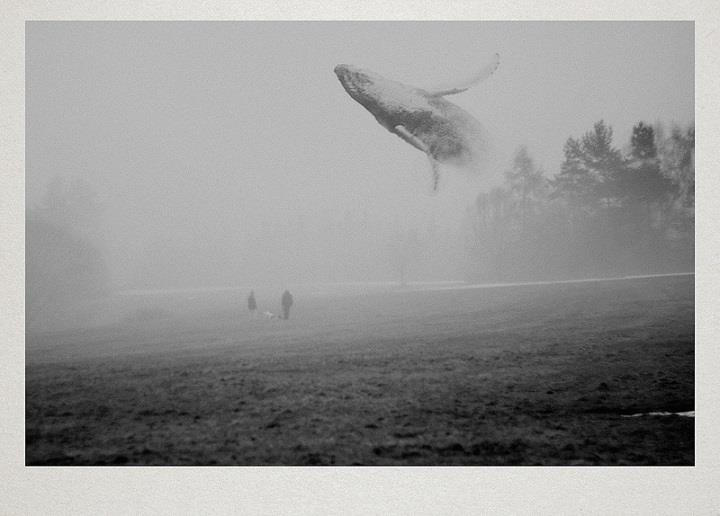 Martin Vlach - surreal photography