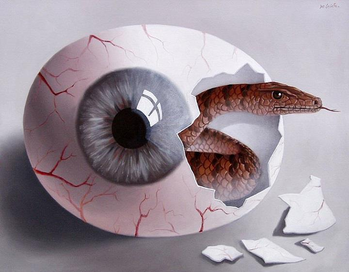 Mihai Criste - eye and snake