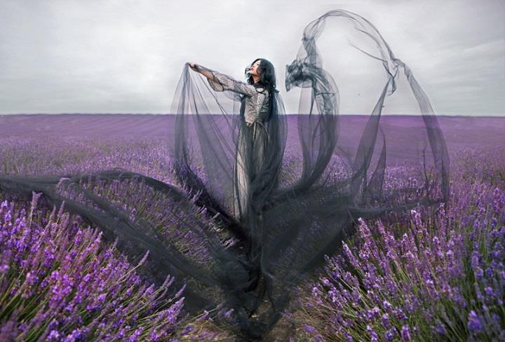 Miss Aniela - meadow