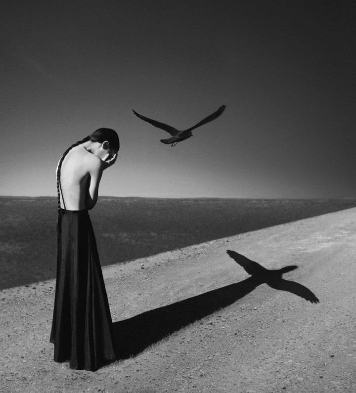 Noell Oszvald - wings