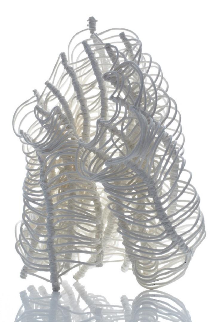 Nuala O'Donovan - Banksia Dancing