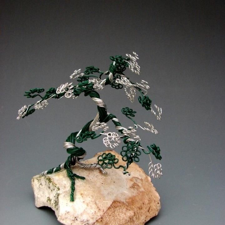 Omer Huremovic - bonsai tree