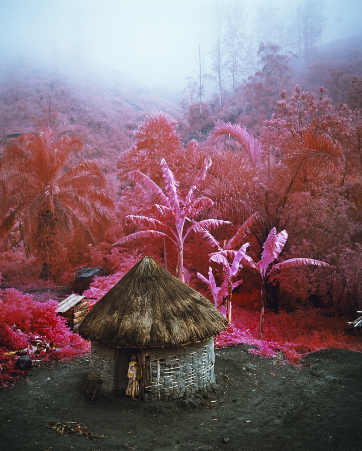 Richard Mosse - comeout