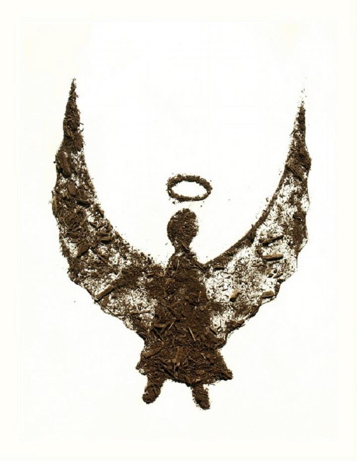 Sarah Rosado - angel