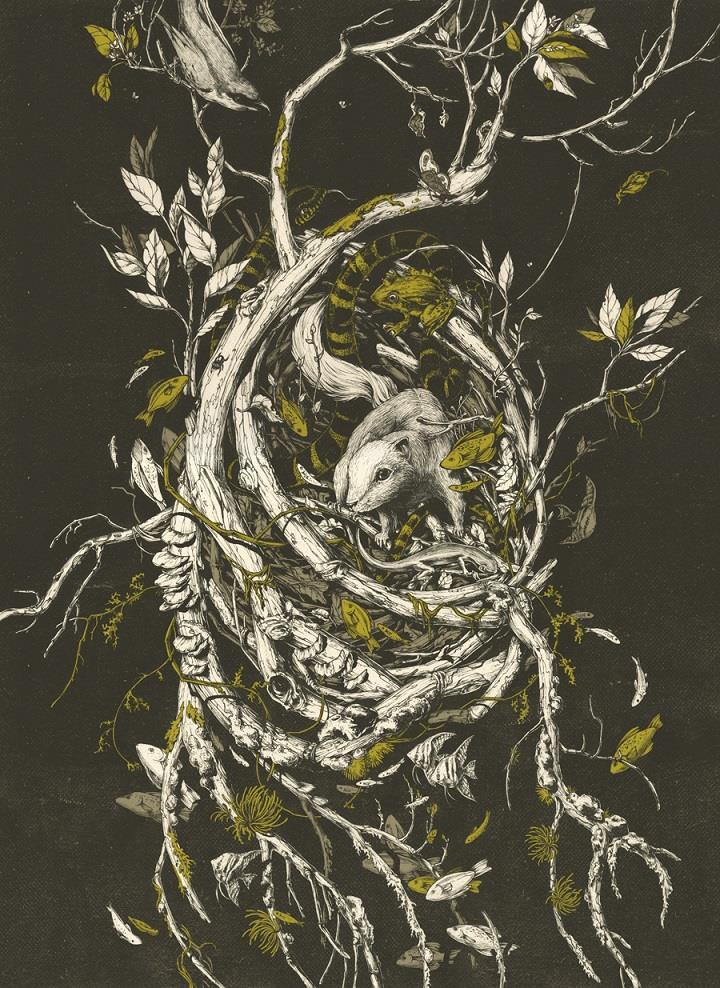 Teagan White - illustration