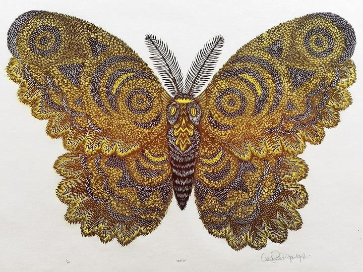Tugboat Printshop - moth woodcut